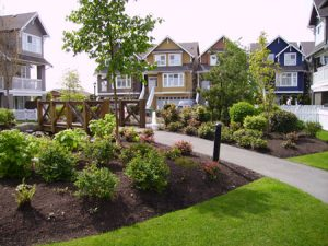 Strata Landscaping Maintenance