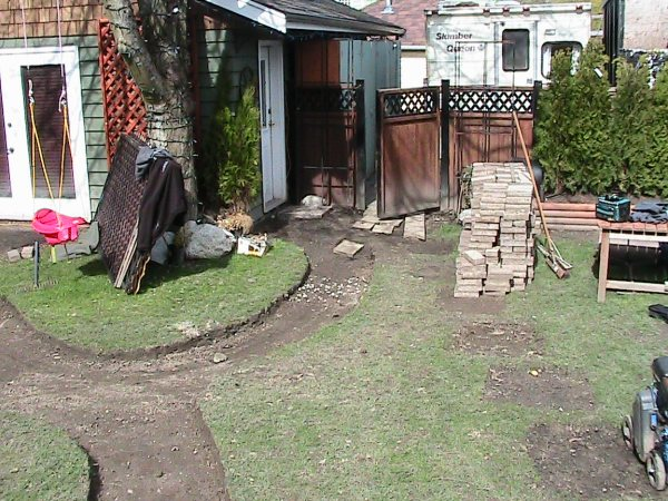 Backyard with tree-garss and stone path-Landscaping Ideas