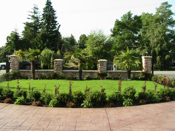 Beautiful Lanscaping of trees, greaa and garden around stone path