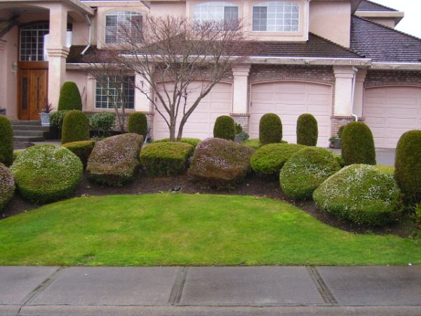 Nice Garden with Trimmed trees and well maintained grass