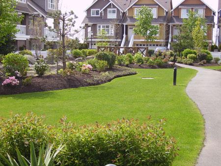 Strata Landscape Design And Lawn Maintenance
