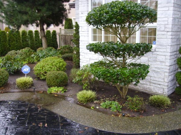 Tree and Garden Design and Installation by Lubberts Landscaping in Richmond Bc